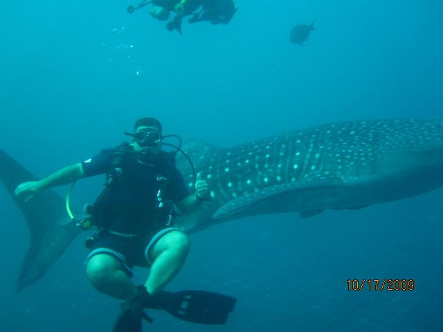 Me and the whale sharks