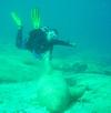 Riding a marble shark