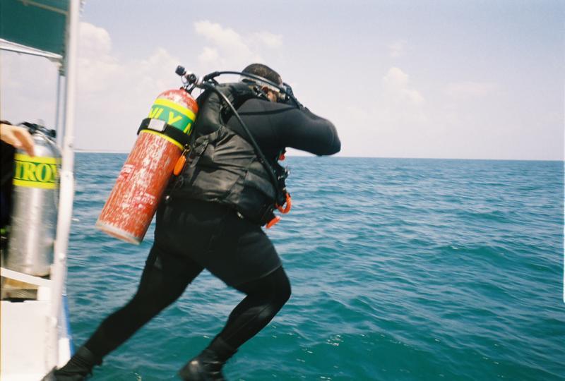 I am -  A Scuba Diver
