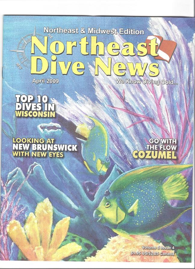 NE Dive Magazine ....my cover art