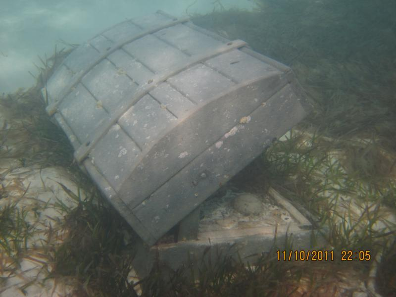 an old trunk underwater