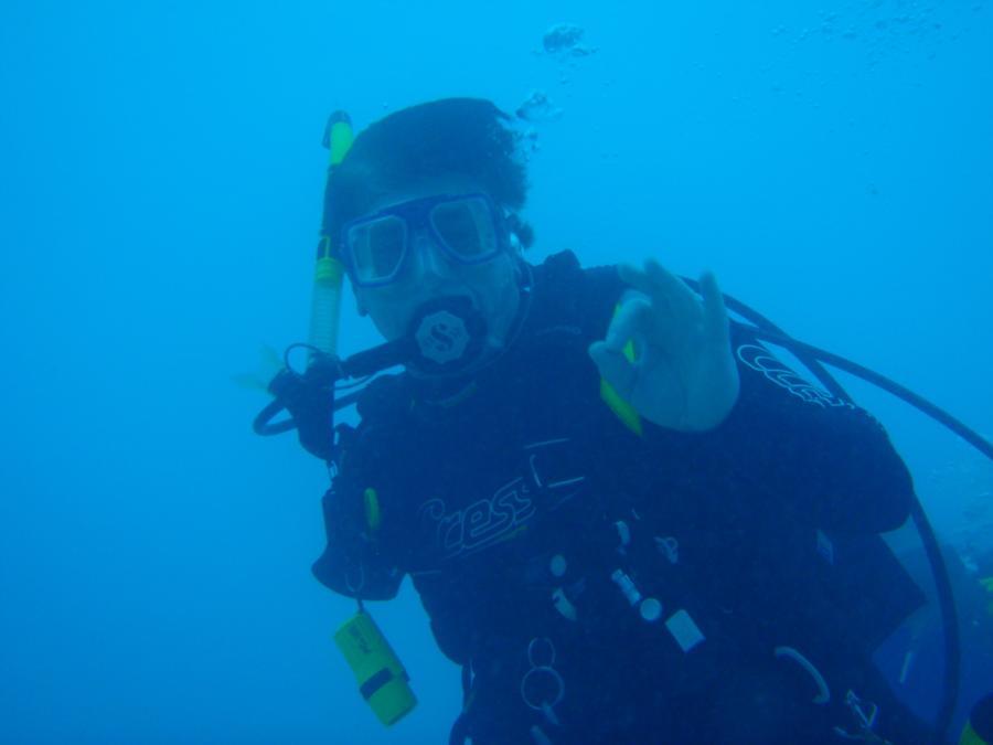 Wanna Dive?