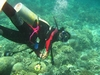 Made - Bali`s First Female Divemaster