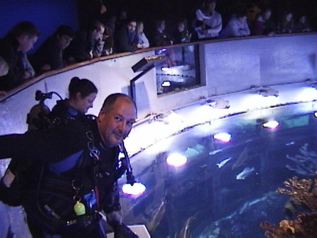 Fins On ~ New England Aquarium