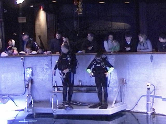 Answering Guest Questions - New England Aquarium
