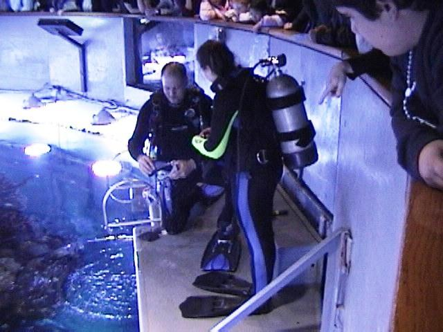 Defogging - New England Aquarium