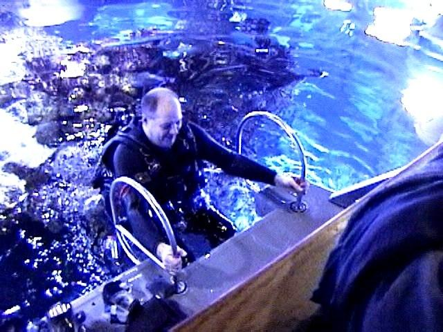 Getting Out of The Giant Ocean Tank - New England Aquarium