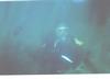 Diving Cabo San Lucas
