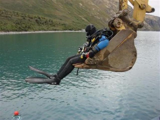 Expert Diver