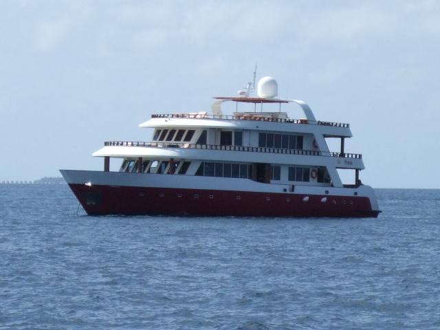 Theia maldives
