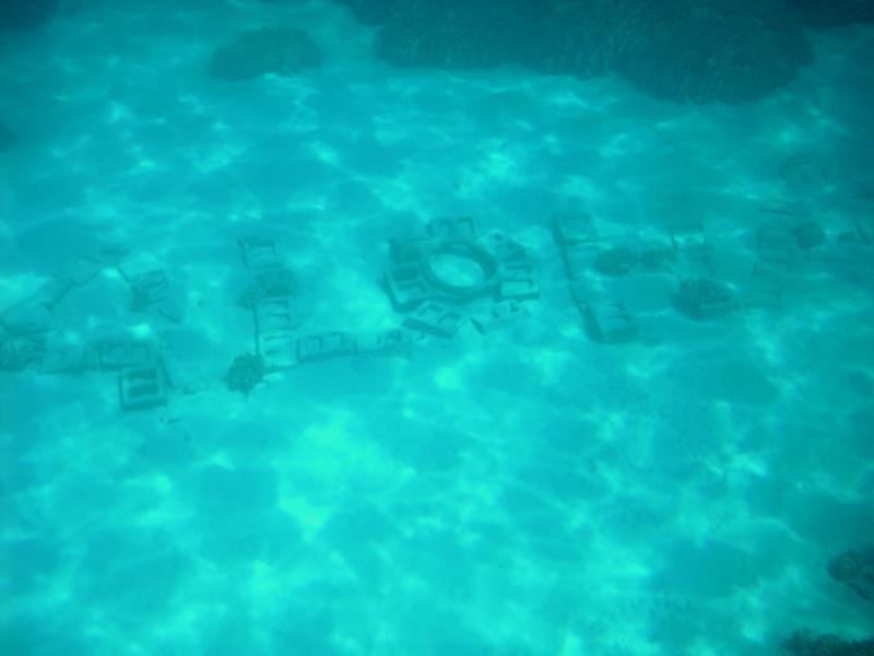 Underwater Greeting in City of Refuge, Big Island, HI
