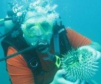 Me and a puffer fish